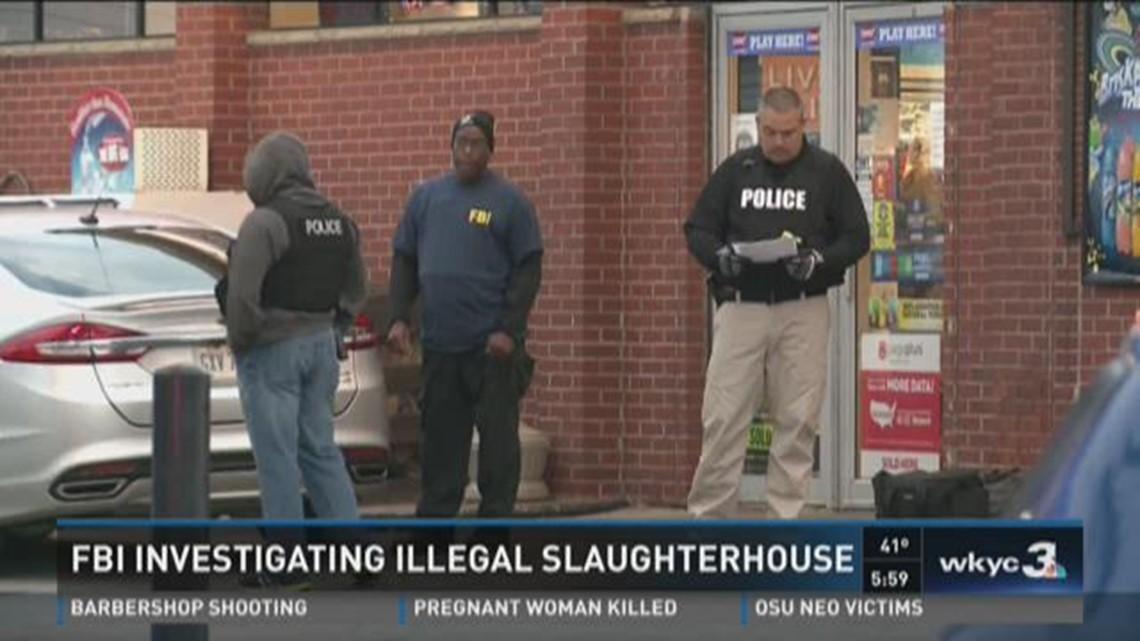 Illegal slaughterhouse